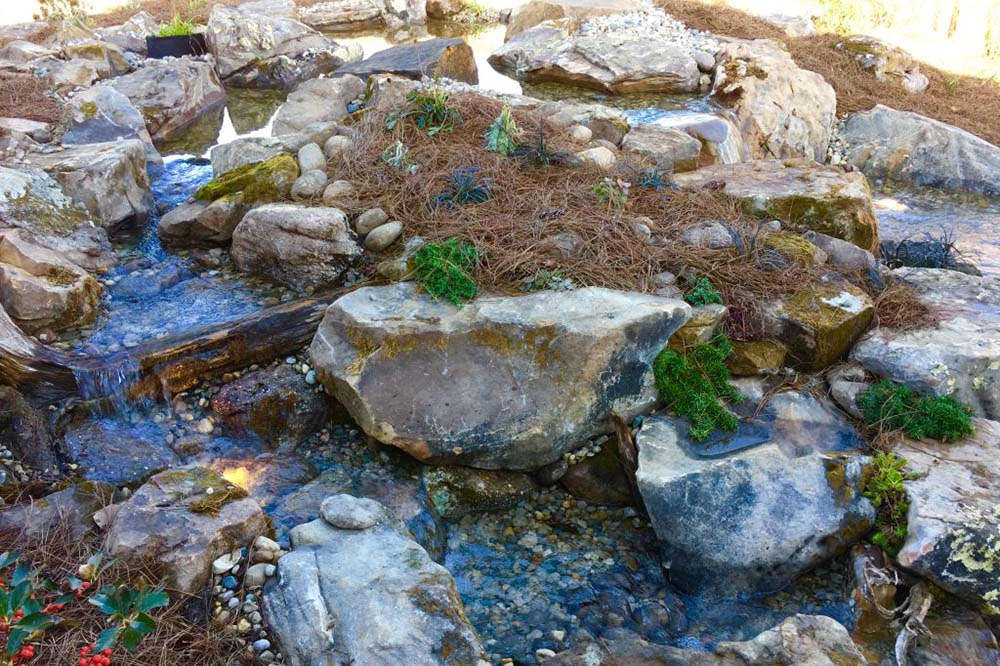 Dual Streams With Moss