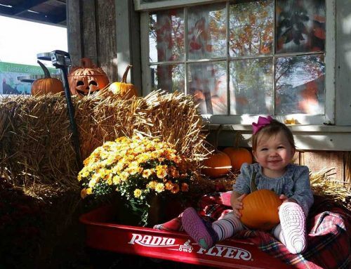 Fall Is A Family Affair At JVI Secret Gardens