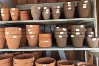 Indoor Plant Pots At Nashville Garden Center
