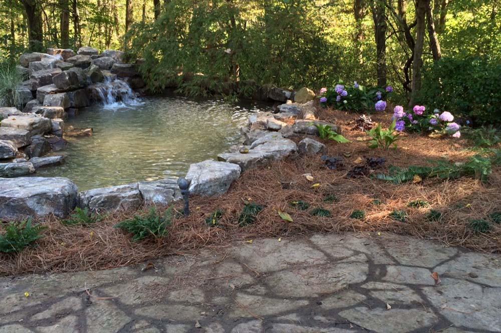 Medium Sized Pond Next To Walkway