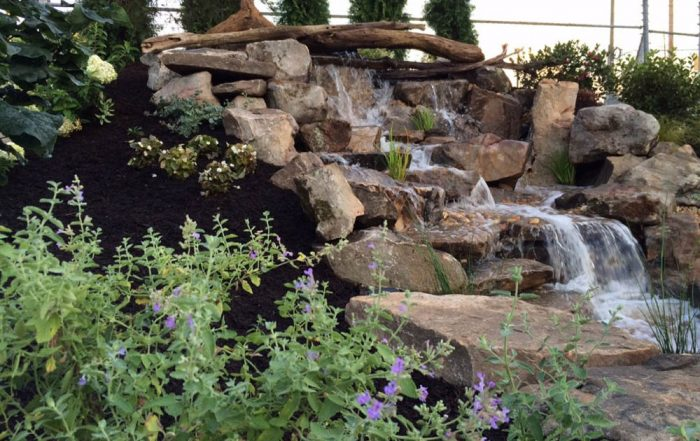 Natural Stream With Mulched Side