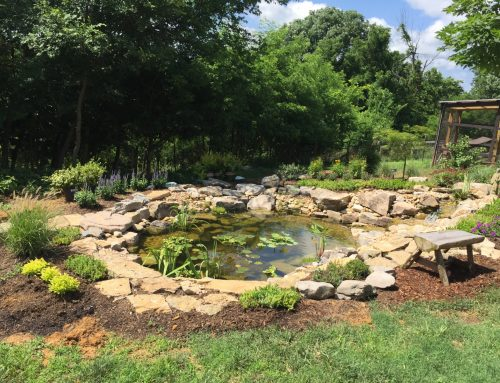 Pond Builders in Gallatin: Watch JVI Work!