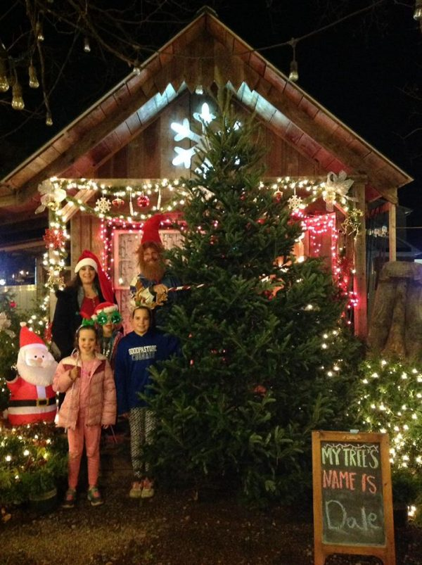 Family with tall Christmas tree
