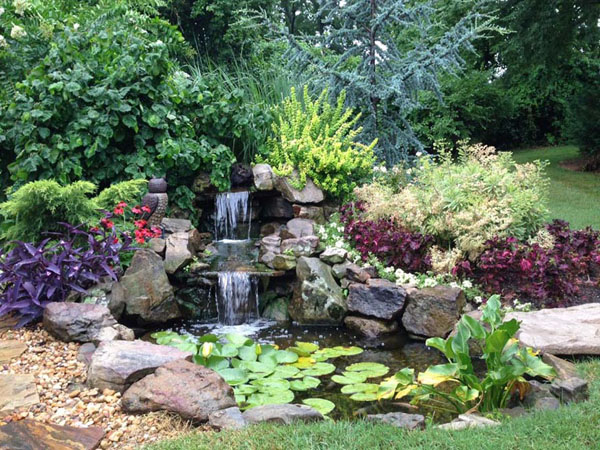 Pond that just had spring maintenance done