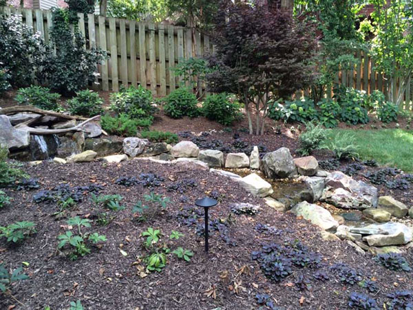 Smaller pondless stream winding through a natural area