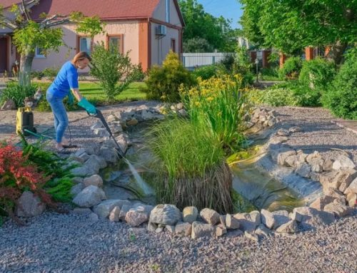 Spring Pond Maintenance In 7 Expert-Tested Steps