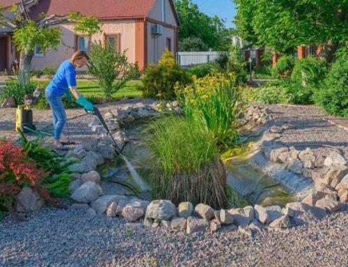 Spring Pond Maintenance In 7 Expert-Tested Steps