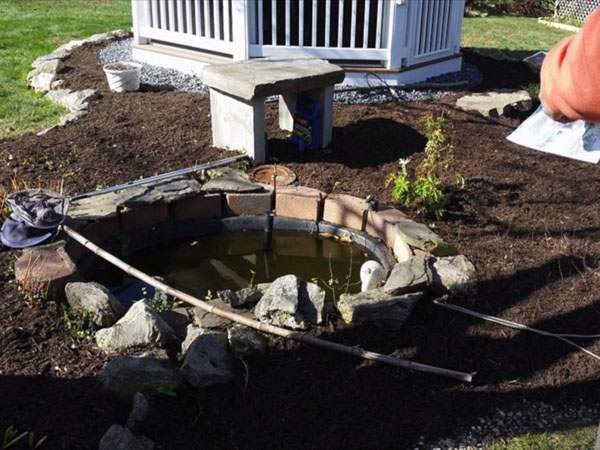 Cheap koi ponds can look like this