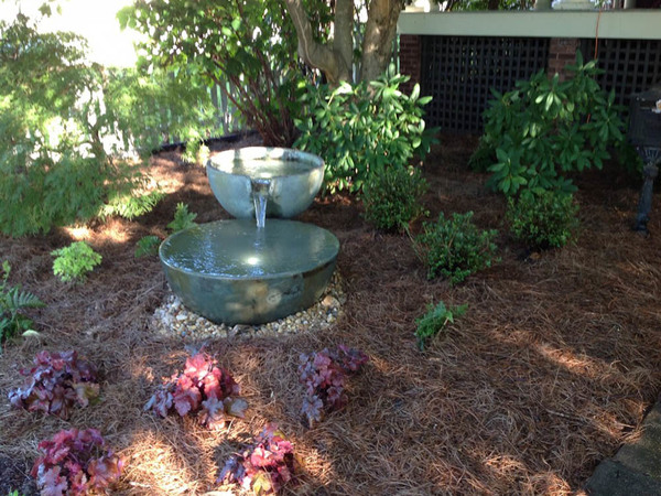 New plantings and spillway bowl
