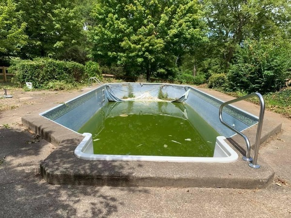 Before converting a pool into a pond