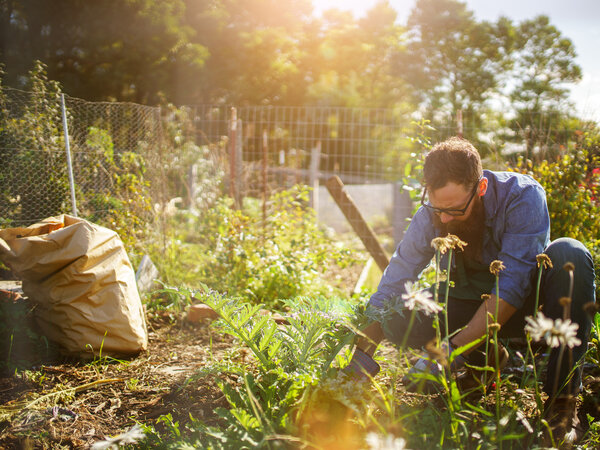 How To Prepare Your Garden For Spring Planting The Best Way